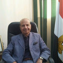 Emad A Hussein
