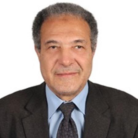 Ahmed G Hegazi